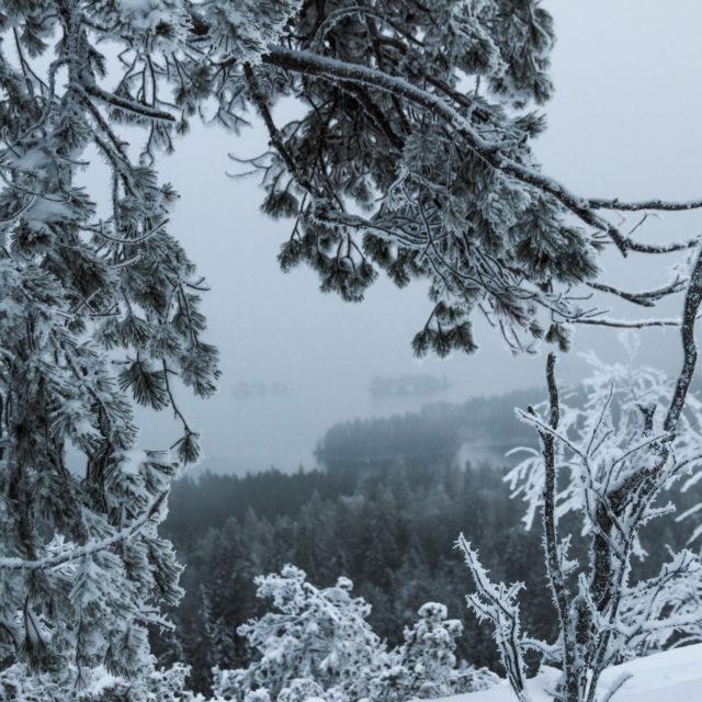 Tulispa lunta, pakkasta ja kunnon talvi. Ennen vihasin talvea ja lunta. Nykyään arvostan enemmän kunnon pakkasia ja lunta, kuin syksyn pimeyttä ja sadetta. Lumettomat ja leudot talvet on kuin olisi lokakuu puoli vuotta. Sitä en todellakaan halua!  Pakkasella ja järven jäätyessä ilma on kuivempi, joten pieni pakkanen tuntuu lämpöisemmältä kuin pieni plussakeli. Lumi ei sotke, kuten kura ja ulkona on enemmän tekemistä. Eniten odotan, että järvi jäätyy ja päästään luistelemaan 😍  Kuitenkin isoin syy miksi odotan lunta; ulkona on tuhat kertaa valoisempaa. ✨  Odotatko sä lunta ja pakkasta? ❄️ _______________________ #munympäristö #thebestoffinland #matkablogi#kotimaassa #suomiretki #matkailuavartaa #ulkoilua #minunsuomeni #teesesuomessa #matkailukotimaassa #suomalainenmaisema #vastuullinenmatkailu #suomimatkailu #nollahukka #ilmastonmuutos #roosablom #vaikuttajamedia #ekosome #ekoperheet #thisisfinland #winterwonderland #familytravel #travelgram